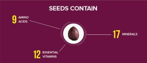 rain-soul-seeds-contain